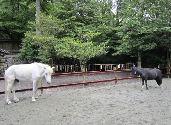 丹生川上神社下社の黒馬と白馬