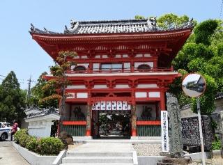 3金泉寺-山門26