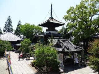 19立江寺-全景26
