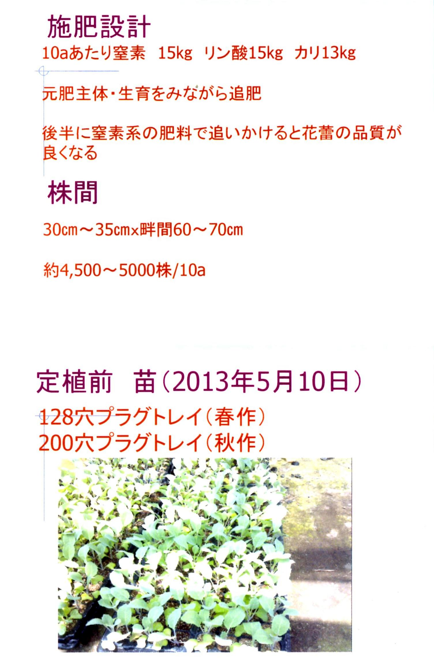 karifu-deta2.jpg