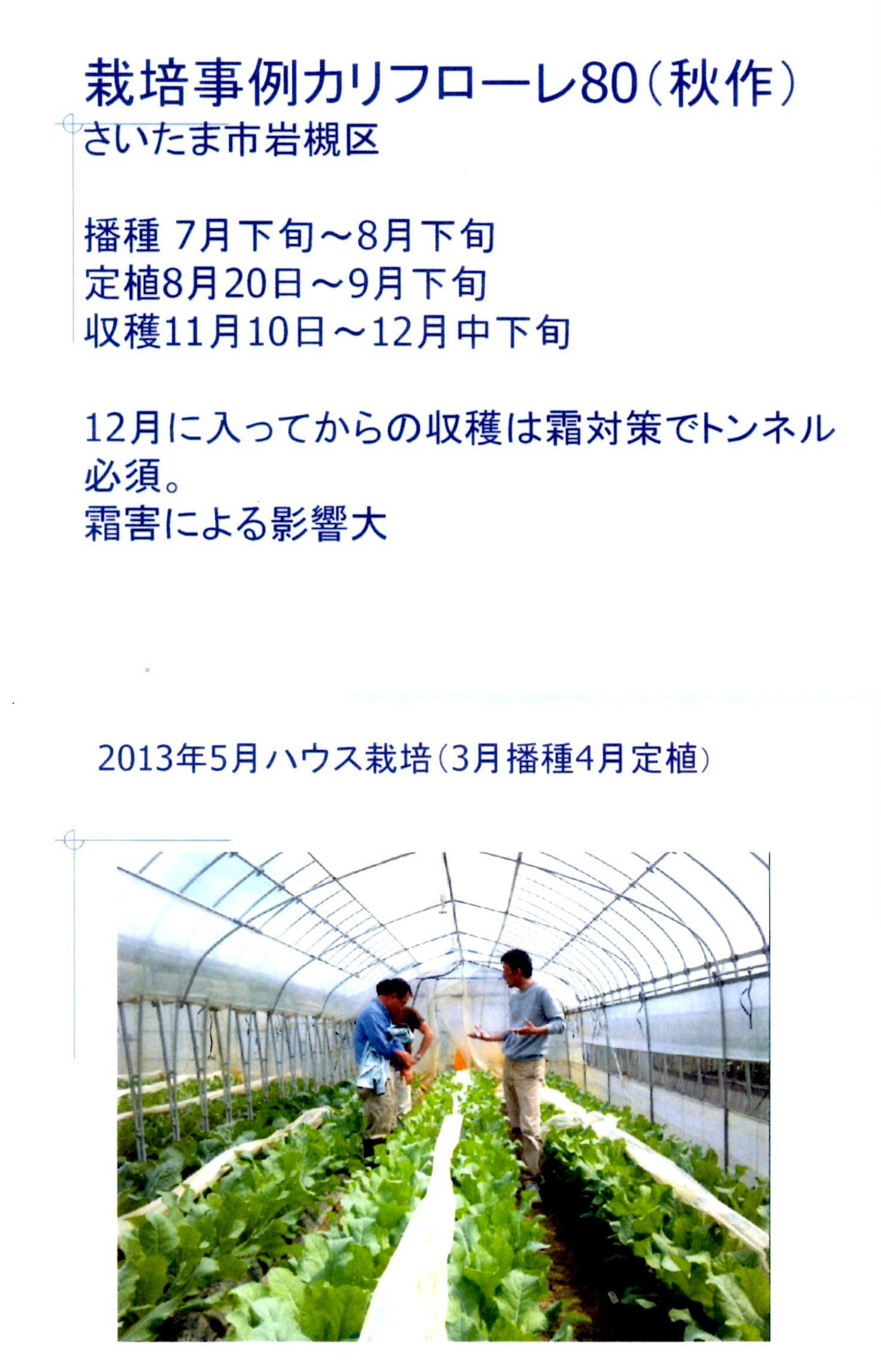 karifu-deta5.jpg