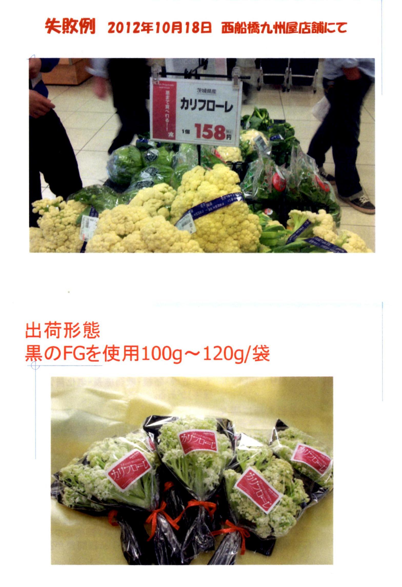 karifu-deta9.jpg