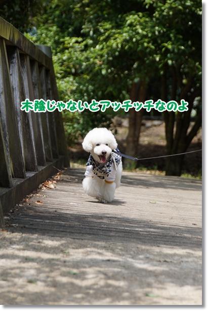 連休最終日2