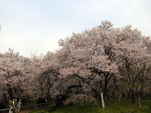 takatou03.jpg