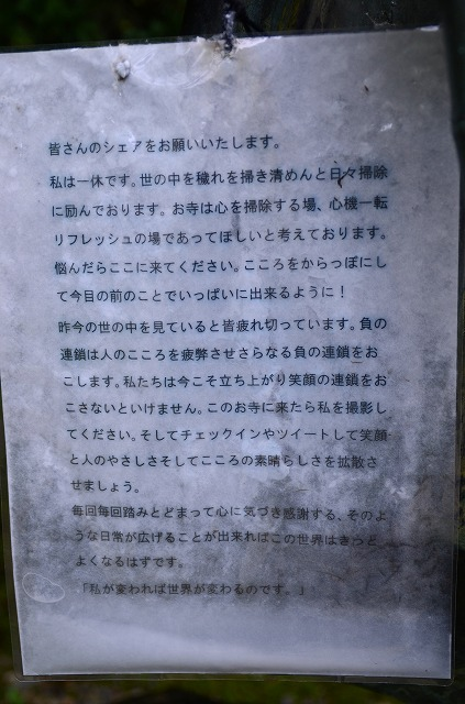 DSC_6204.jpg