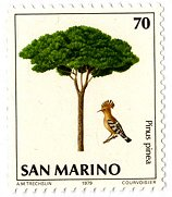 サンマリノ共和国切手イタリアカサマツの絵REVdownsize