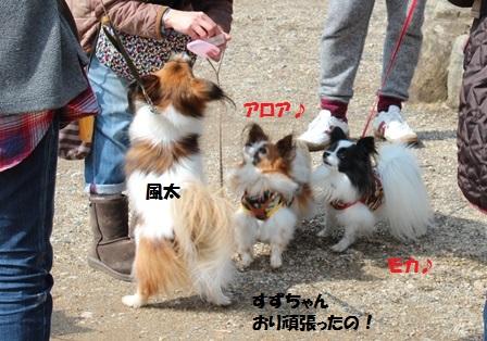 風太+モカアロちゃん