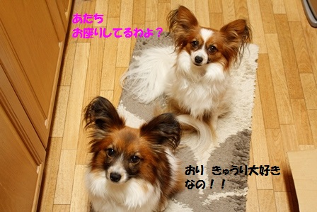_MG_3708.jpg
