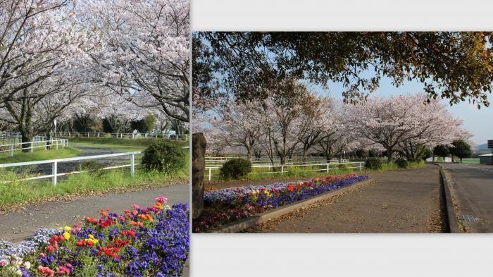 2015-03-031_convert_20150419211317.jpg