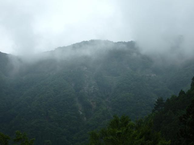 ぐんぐんと高度を上げて登る林道