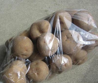 スーパー購入ジャガイモ (2)