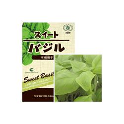 バジルの有機種子
