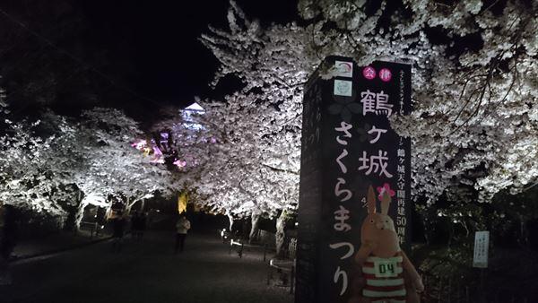 鶴ケ城ライトアップ1