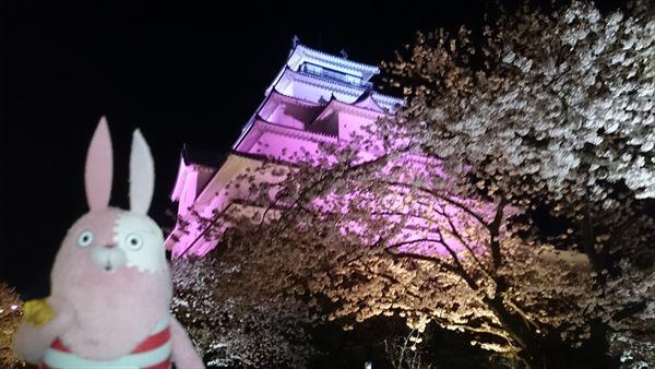 鶴ケ城ライトアップ2