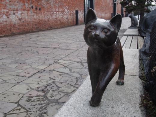 函館ベイエリアの猫ちゃん