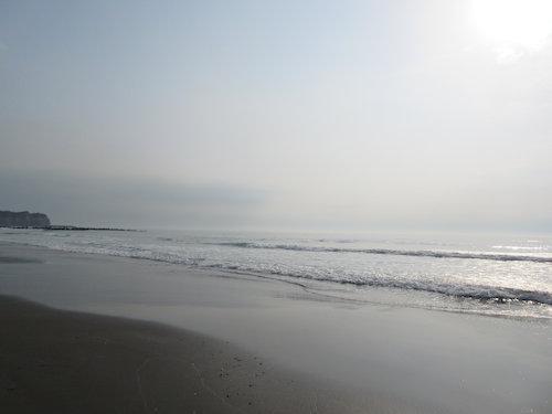 15.03.16.つれづれ1