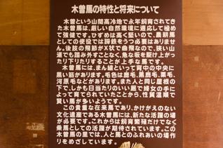 DS2_9963-3.jpg