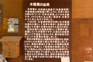 DS2_9965-3.jpg