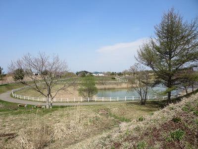 2015駒ヶ岳16