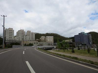 つつじ2015-13