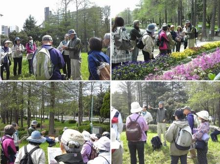 150412-2桃山公園散策