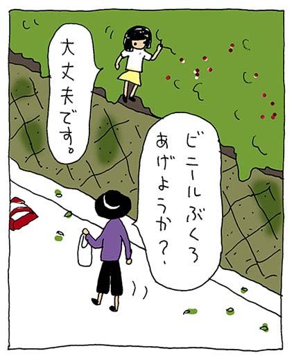 クサイチゴ3