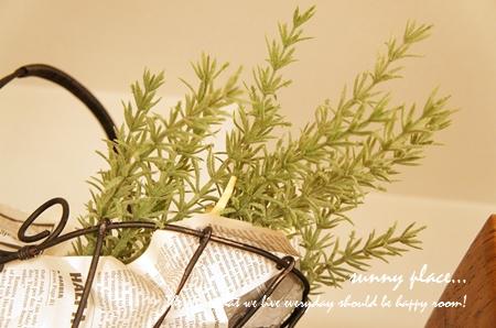 rosemarry-blog.jpg