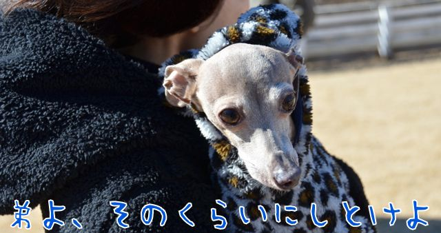 DSC_8406.jpg