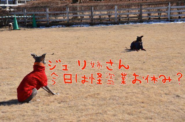 DSC_8560.jpg