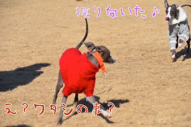 DSC_8577.jpg