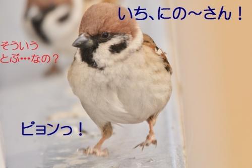 020_2015022721213813c.jpg