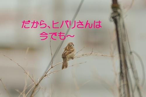070_201507011822479e1.jpg