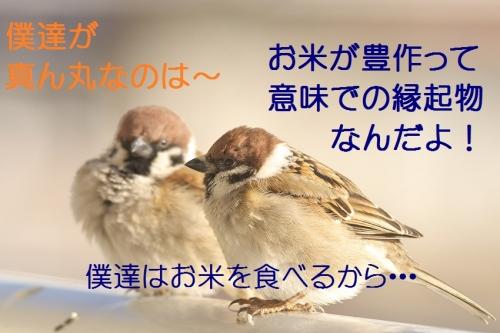 090_201502062247577ee.jpg