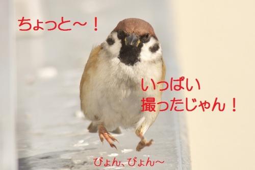 100_20150120195926c1e.jpg