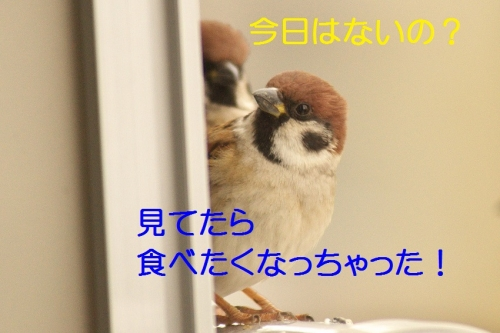 100_201501302106042e4.jpg