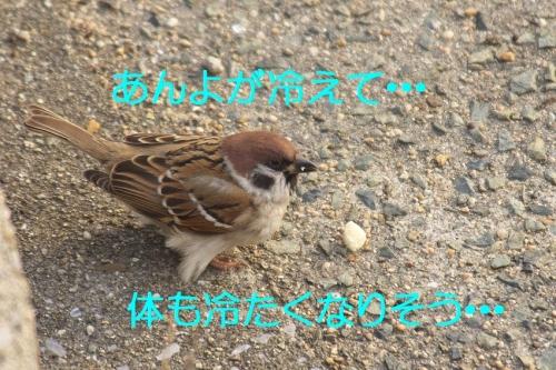 120_20150118183630c59.jpg