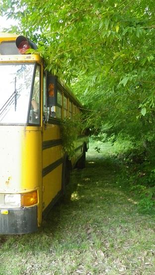 バス移動 (5)