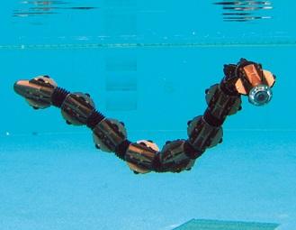 20150501ヘビ型水陸両用ロボット(東京工業大学)