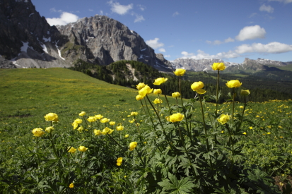 dolomiti-italia14-06-3000132.jpg
