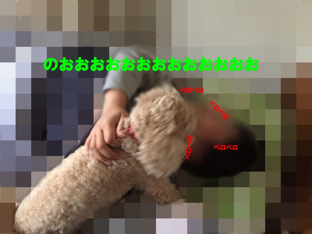 13-006.jpg