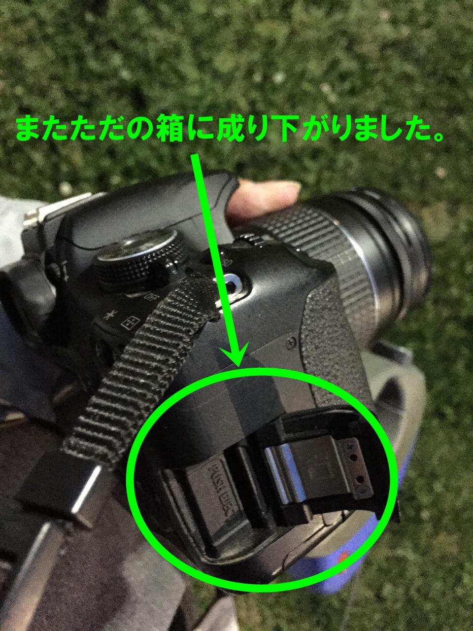 6z-010_201504302011021ab.jpg