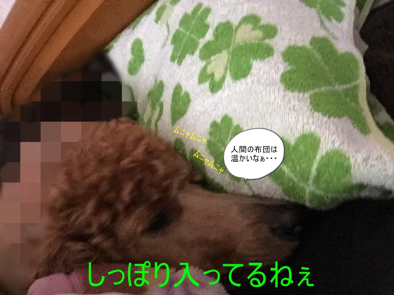 s6-IMG_4675.jpg