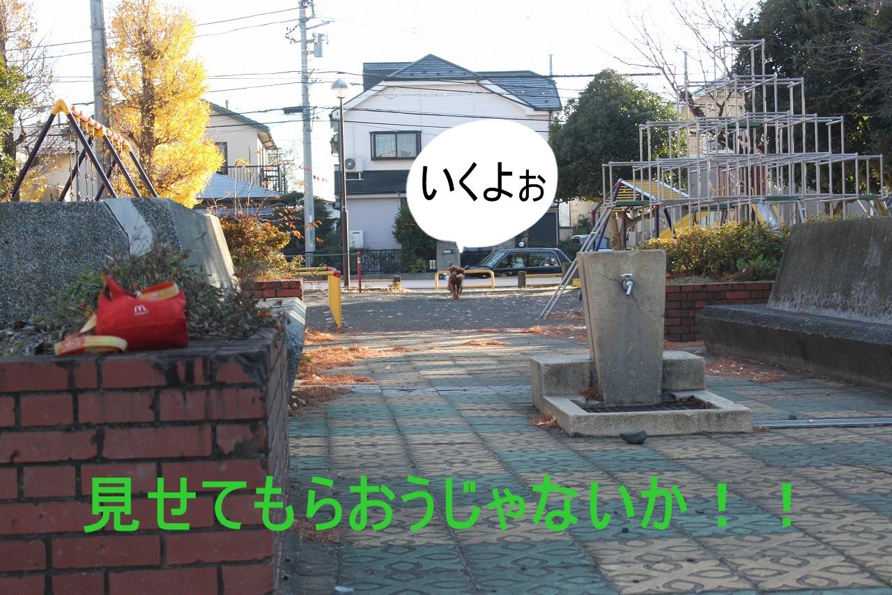 sn-001.jpg