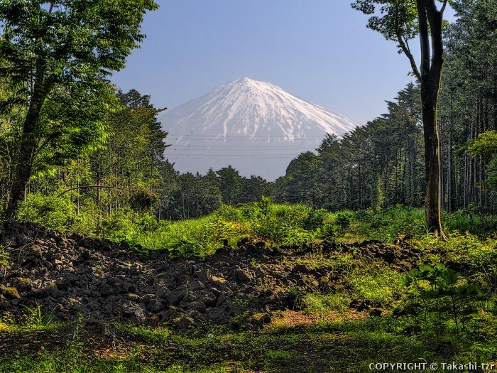 富士山(山宮浅間神社から)