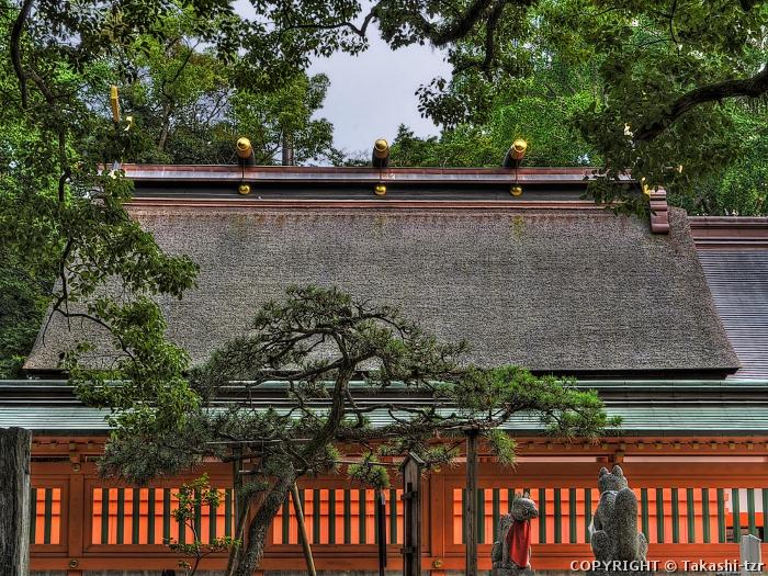 住吉神社本殿(福岡)