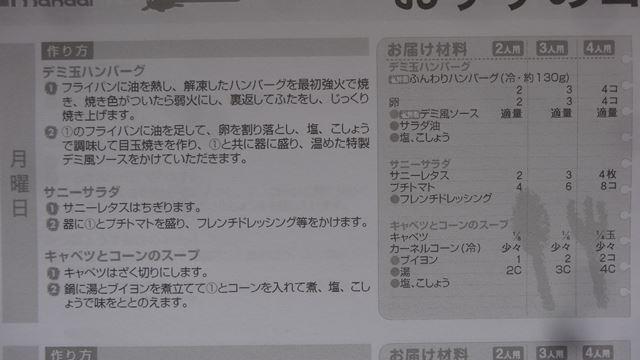 DSC09885R.jpg