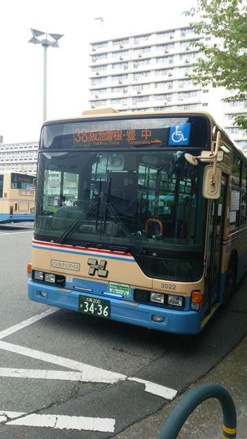 DSC_1024.jpg