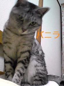 tamanya1219さんのブログ-110219_2317~01_Ed.JPG