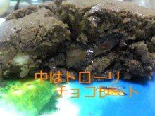 tamanya1219さんのブログ-110225_2241~01_Ed001.JPG
