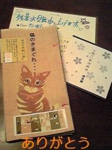 tamanya1219さんのブログ-110831_2036~01_Ed.JPG